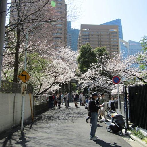 花見のついでに地下鉄をぐるぐる〜