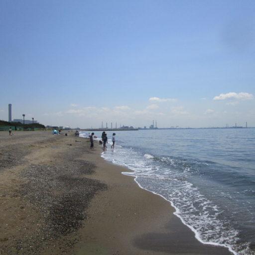 いなげの浜が白い砂浜になってた