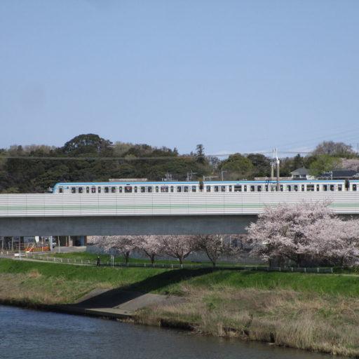 【撮影地紹介】東葉高速鉄道と桜を絡めて撮影!